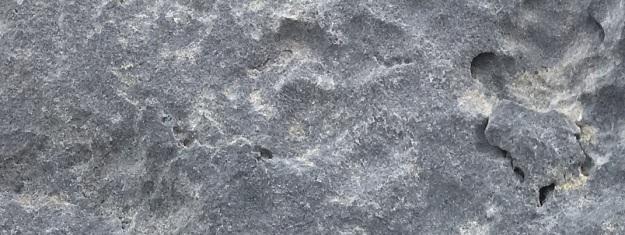 Ciaran Grey